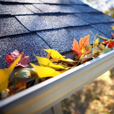 Eavestrough Cleaning - Gutter Cleaning - Mississippi